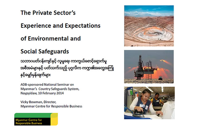 The Private Sector's Experience and Expectations of Environmental and Social Safeguards