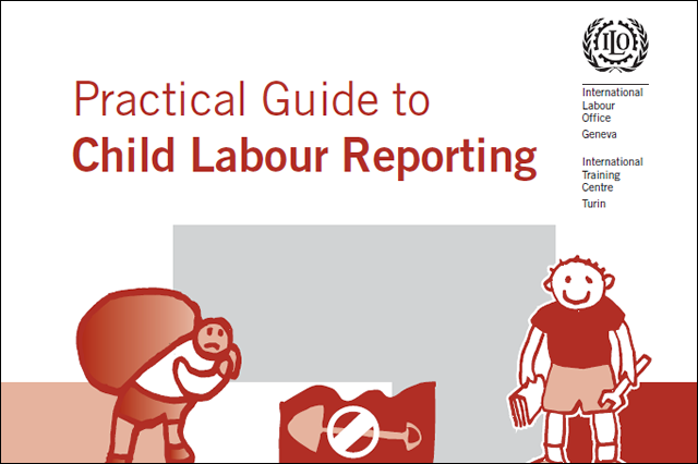 These Guidelines are meant as an additional tool, building upon the existing Report Form.
