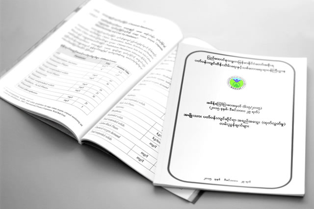 The first set of Myanmar National Environmental Quality Guidelines to regulate emissions in a number of sectors were released on 29 December 2015.