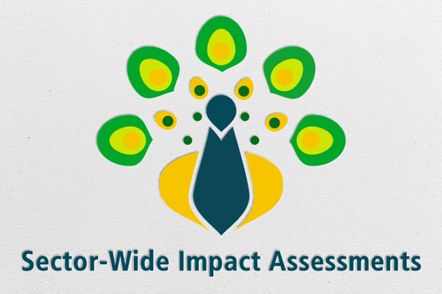 The workshop follows the publication in September 2014 of a sector-wide impact assessment (SWIA) of the oil and gas sector by MCRB.