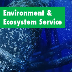 Environment & Ecosystem Service