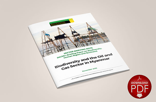 Biodiversity and the Oil and Gas Sector in Myanmar